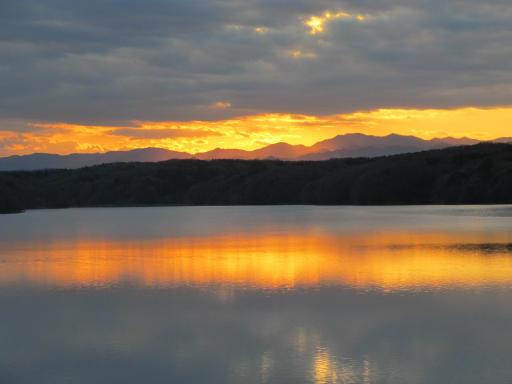 20120114・狭山湖1-21