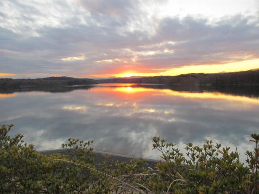 20120114・狭山湖1-24