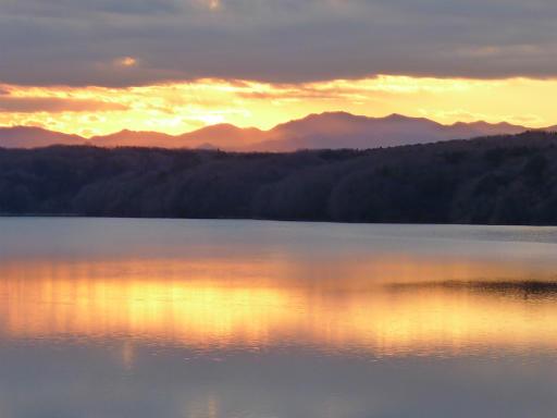 20120114・狭山湖2-22