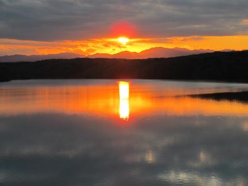 20120114・狭山湖1-23