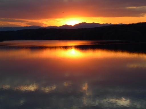 20120114・狭山湖2-25