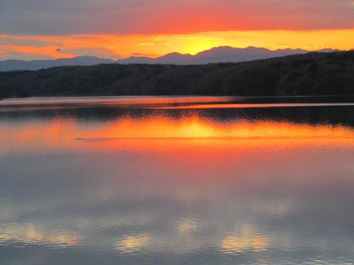 20120114・狭山湖1-26