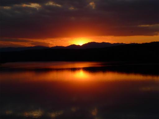 20120114・狭山湖2-25-1