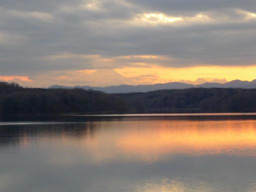 20120114・狭山湖2-28