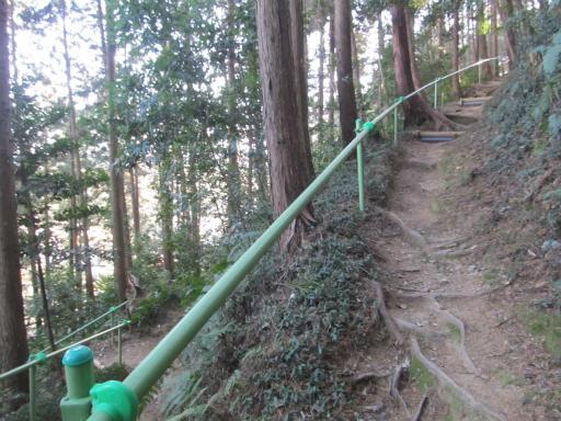 20120114・高麗神社08-2
