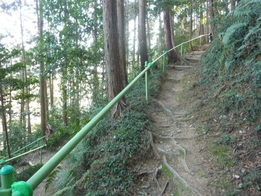 20120114・高麗神社08-3