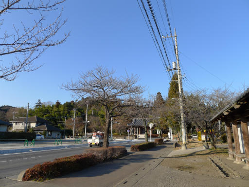 20120114・天覧山01-1