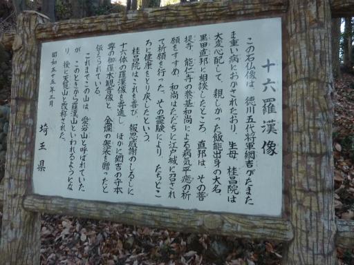 20120114・天覧山07-3