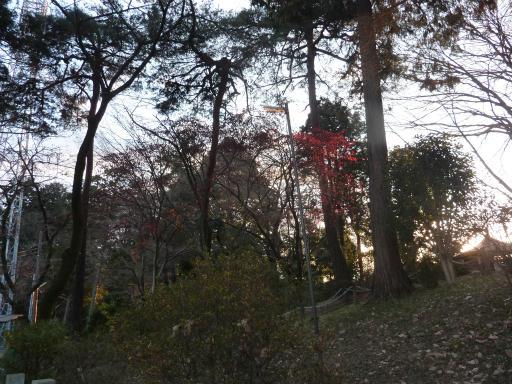 20120114・天覧山24-3
