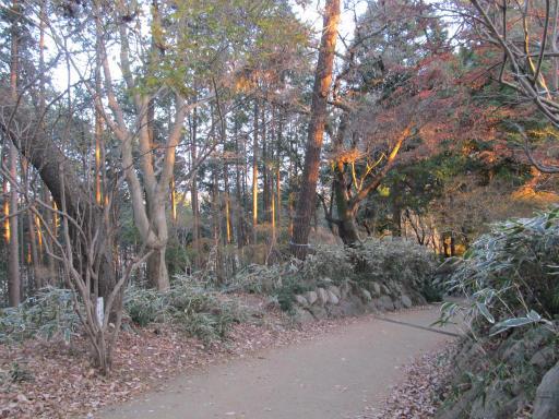 20120114・天覧山23-2