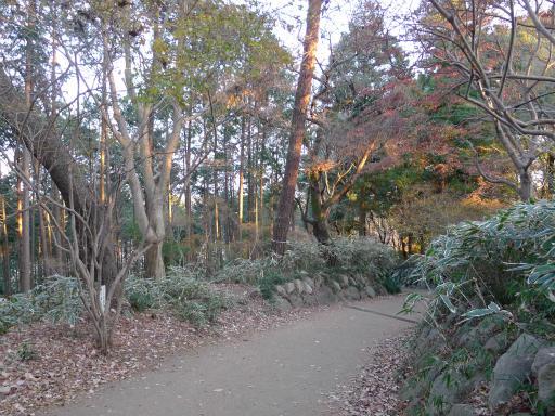 20120114・天覧山23-1