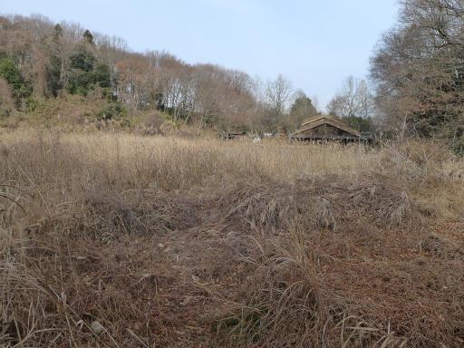 20120115・自然観察会04-1