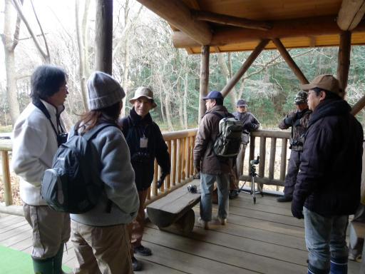 20120115・自然観察会01-1