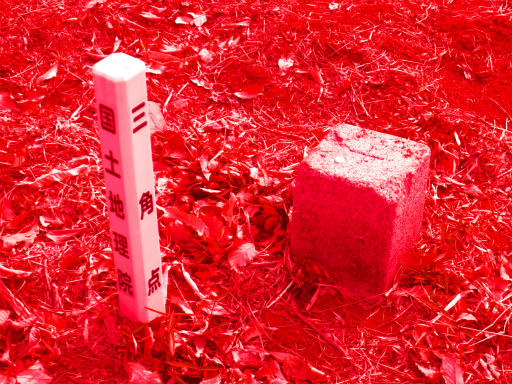 20120115・自然観察会RAW02d