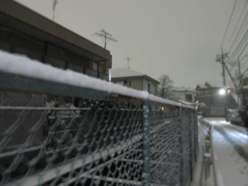 20120123・ドカ雪11