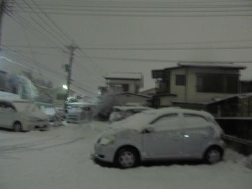 20120123・ドカ雪10
