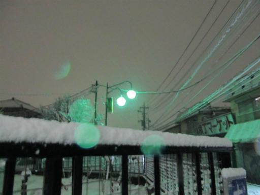 20120123・ドカ雪08