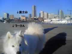 20090103_01