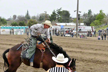 Saddle Bron, Jess Williams (NS), Elko, NV_DSC7363-4.10.10 (2)